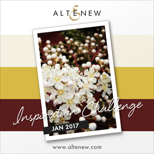 altenew_january2017_challenge_graphic-1201149