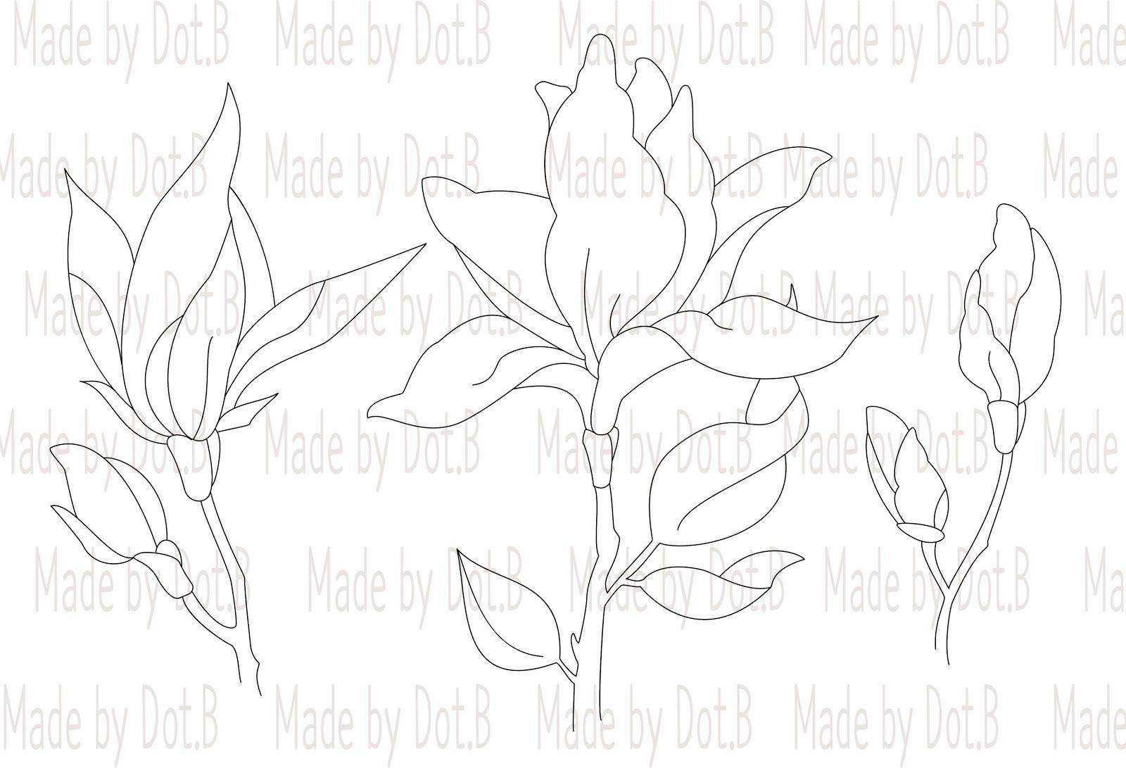 magnolia3ef674c9fd176649c89f9051e814eea51265cffdec397d743062752c782d724e2bwatermark-5388597