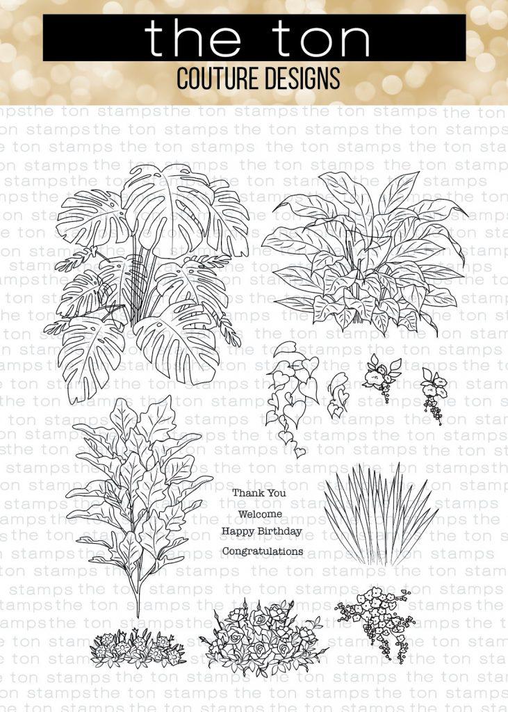 lush-plants